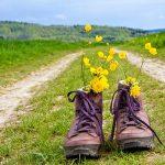 Reflexión del mes : El camino de la vida