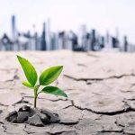 Reflexión: ¿Qué hacer ante las circunstancias adversas de la vida?