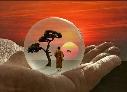 Reflexión del mes: la sabiduría